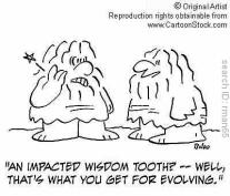 wisdom-tooth-cartoon-cartoonstock-com